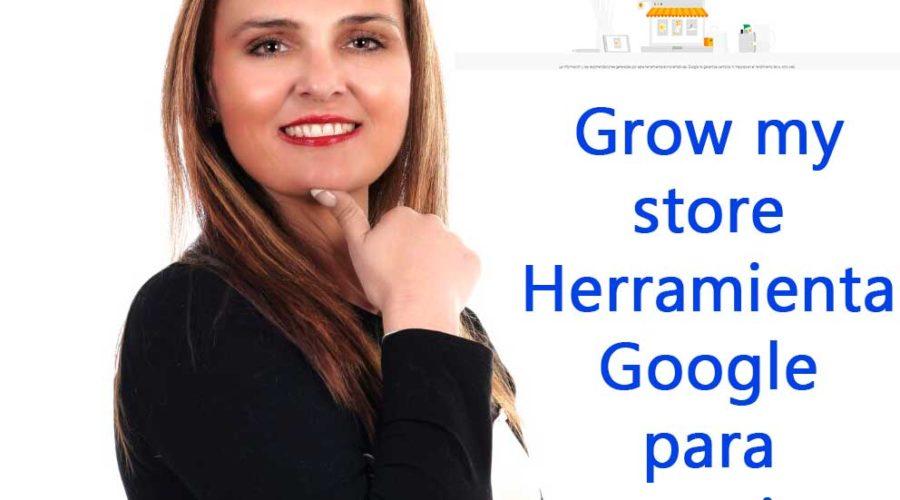 Gran herramienta Google Grow My Store para tiendas Online /Offline